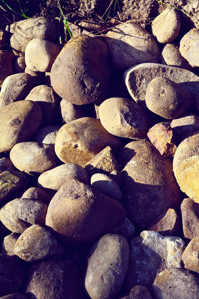 Week 8 Buchanon Canyon 9.jpg