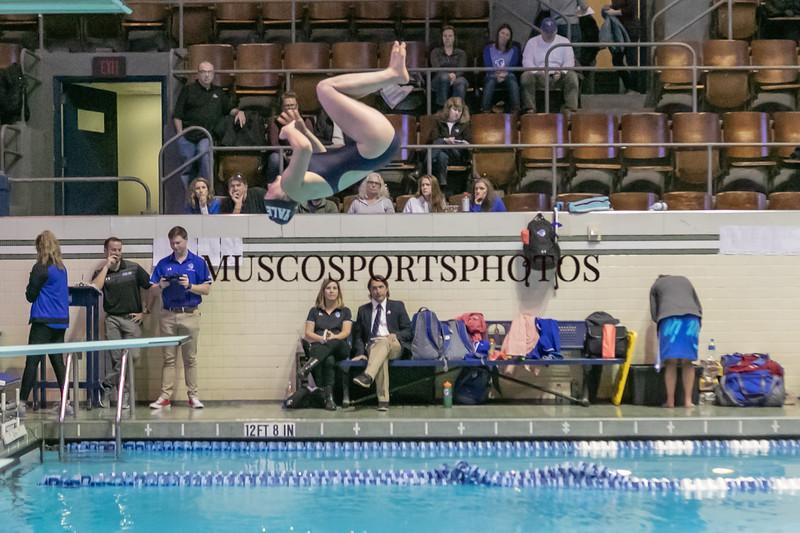 Swimming-diving vs Seton Hall_1150.jpg