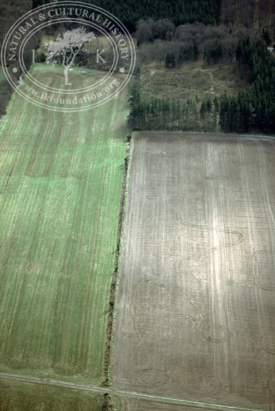 Farmland west of Ravlunda church - with plantations, buildings and prehistoric remains (2 April, 1989). | LH.0523