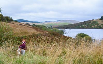 Walk to Glenquey Reservoir