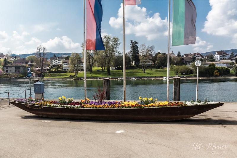 2017-04-05 Stein am Rhein und Schaffhausen - 0U5A4558.jpg