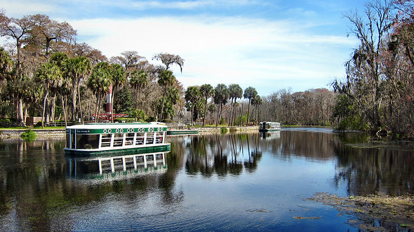 Silver Springs in Ocala. Florida