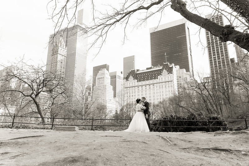 Central Park Wedding - Ariel e Idelina-246.jpg