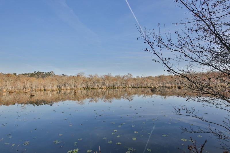 Apalachee River Timberlands_-4.jpg