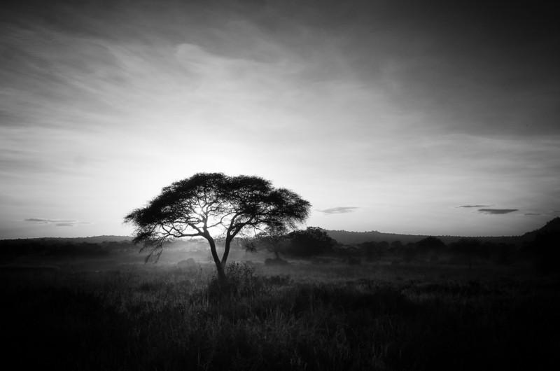 MikeAfrica-3207-Edit.jpg