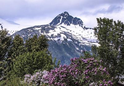 Alaska, 2010 and 2014