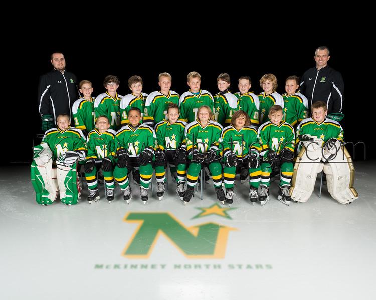 2015-16 Hockey