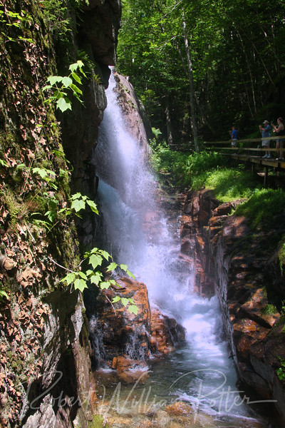 The Flume Gorge