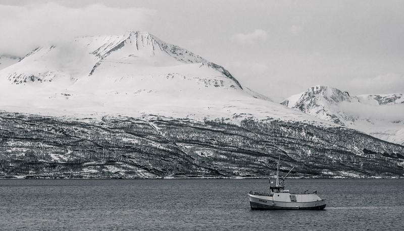 Fishing Boat in Norway
