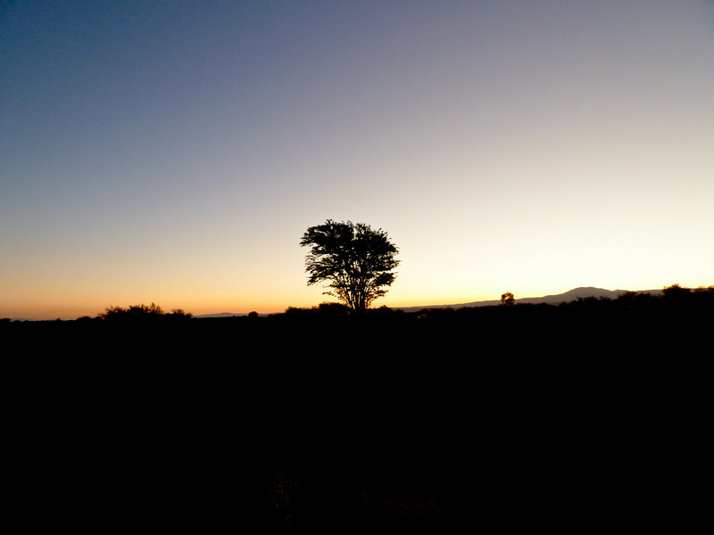 2010 dia 1 duna sunset.jpg