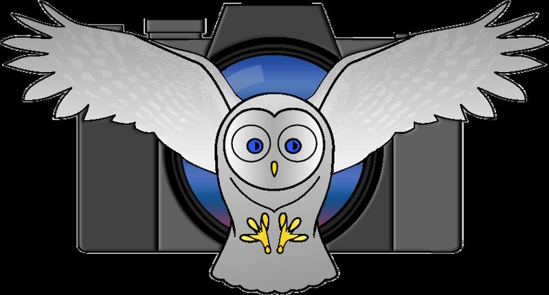 Flying-Owl-Logo-SLIM.png