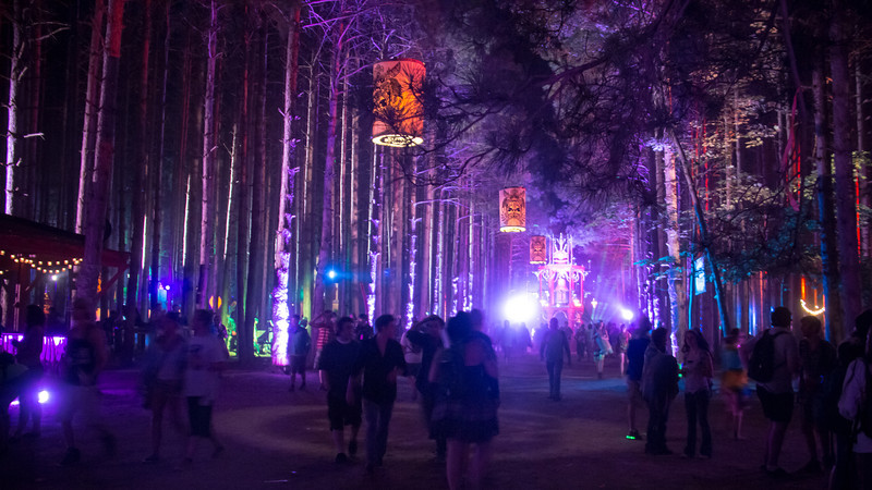 Electric Forest | June 2013