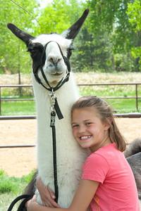 Millie Mayo and Llamas