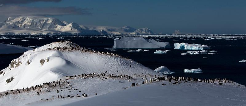 antarctica-20131109-0669-pr.jpg