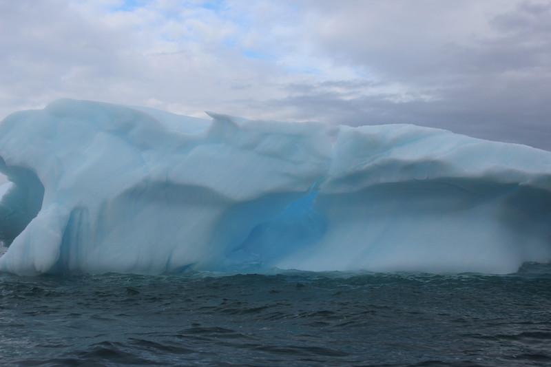 Antarctica 207.JPG