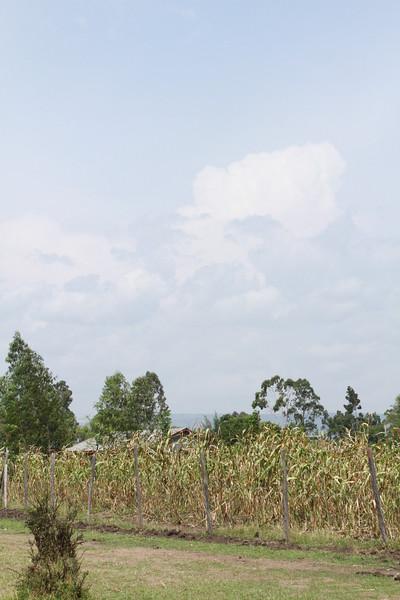 Kenya Part1 '15 1531.JPG