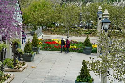 Arboretum Spring 2021