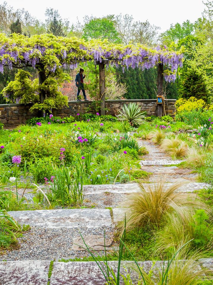 Chanticleer花园,景景相连