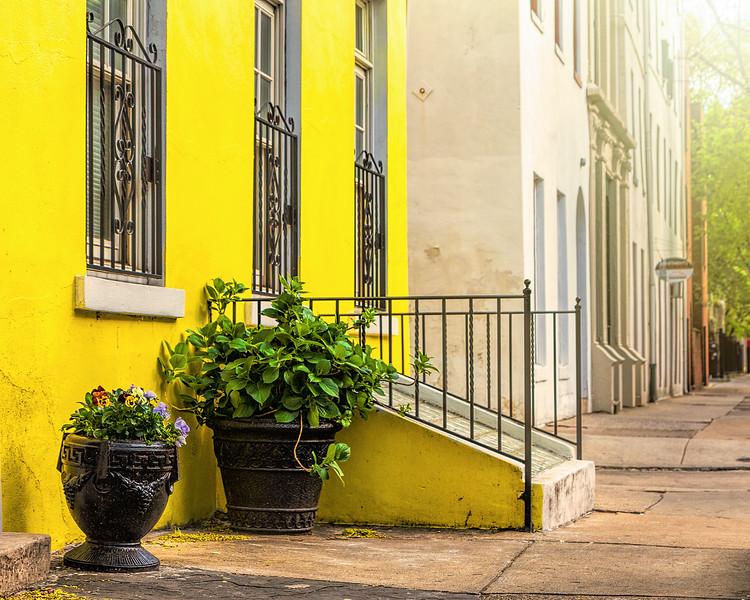 Yellow House-.jpg