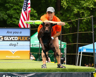 2019-6-30 DockDogs Big Air Canine Aquatics Competition...under construction