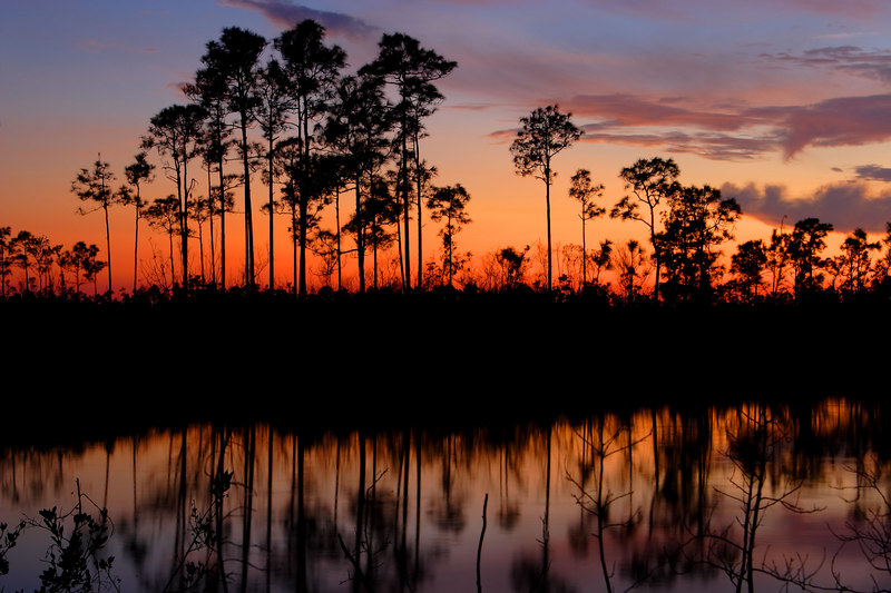 Sunset, Pine Glades Lake Everglades National Park Florida
