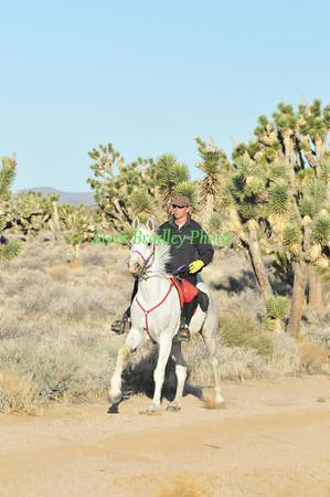 Eastern Mojave D3