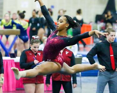 Temple University Gymnastics