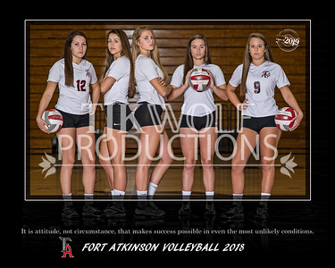 Fort Girls Volleyball 2018