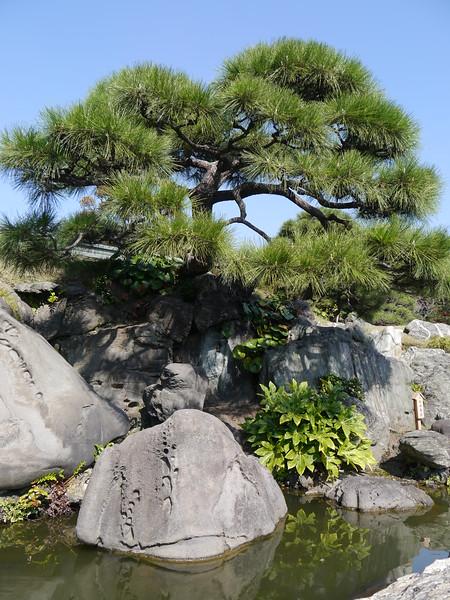 05-Japan2011_2487.JPG