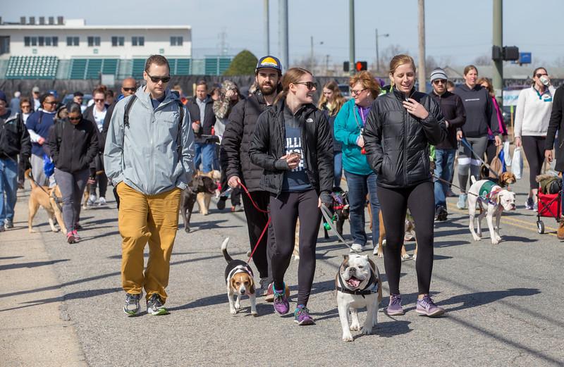 Richmond Spca Dog Jog 2018-792.jpg