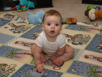 Lincoln Gehring 6 Month