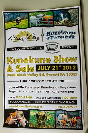 Kunekune Show July 2012