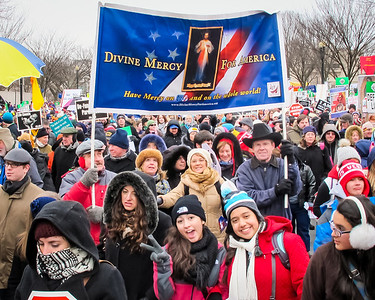 March for Life with the MOMM Squad and the Divine Mercy for America Campaign Washington DC Jan 22 2013