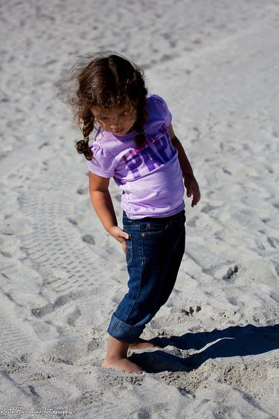 Sanibel Beach 2013_ 30.jpg