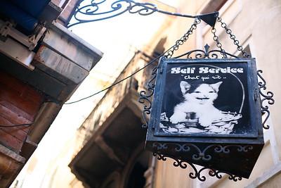 Venezia, Italy - Chat Qui Rit
