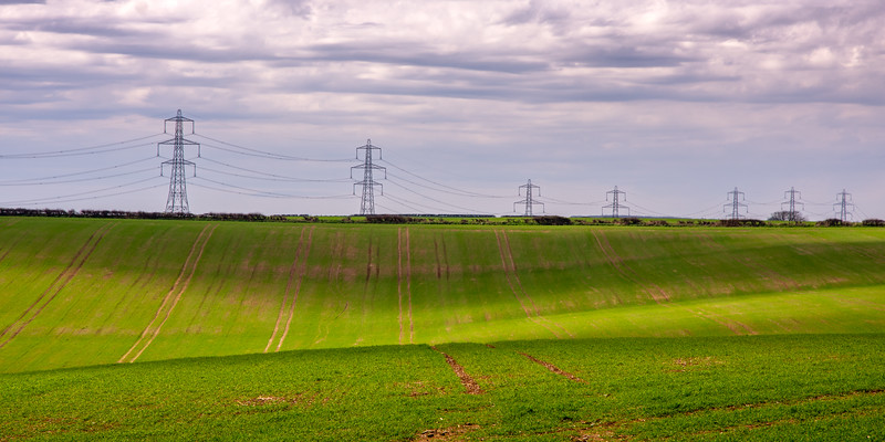 Pylons marching over Dorset farmland
