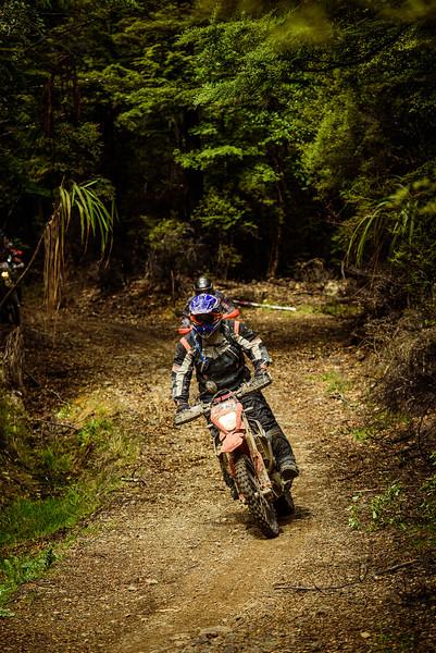 2019 KTM New Zealand Adventure Rallye (1304).jpg