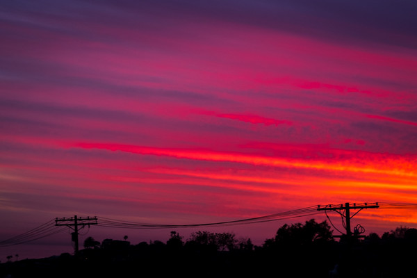 March 10 - Poles, wires, trees amidst the setting sun.jpg