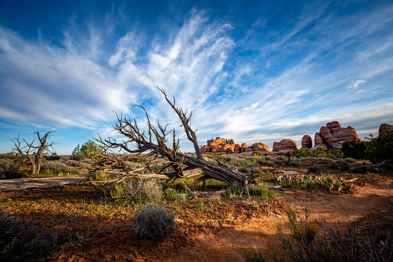 Elephant Canyon Trail, Needles Canyon Lands Natl Park, UT