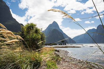 New Zealand - Part 2
