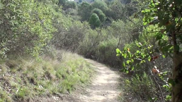 Trail Videos
