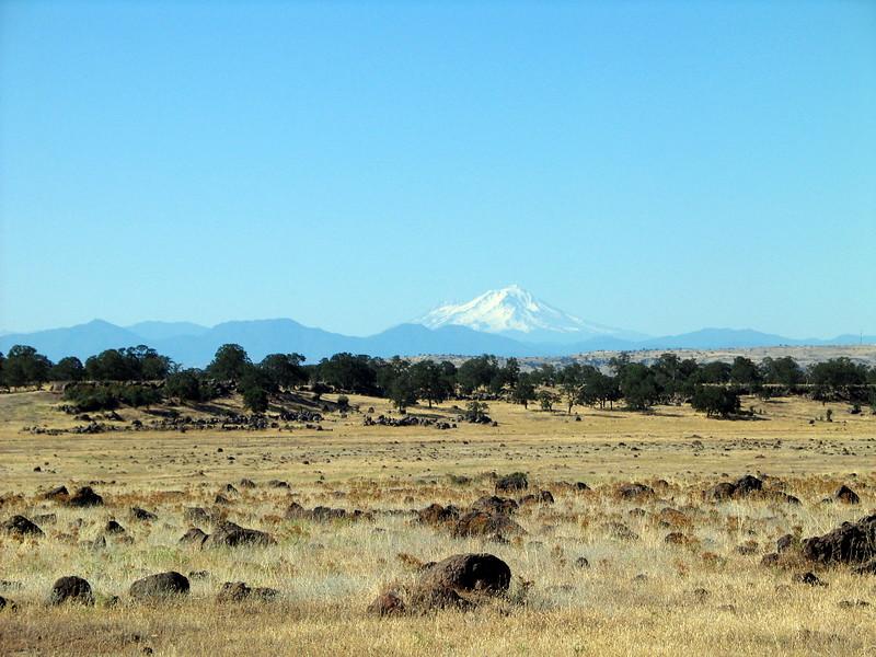 Mt Shasta, near Red Bluff (1).jpg
