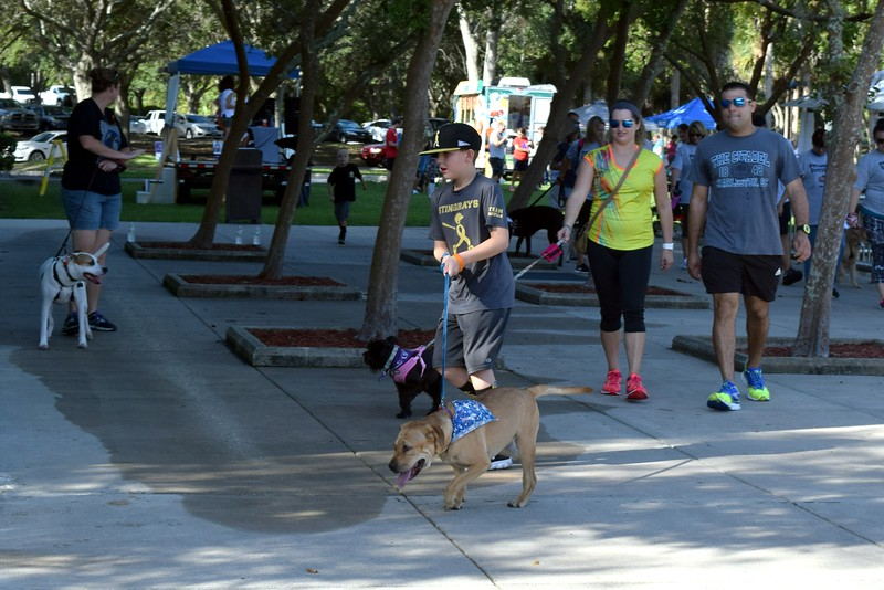 2016 Volusia Co Bark For Life (67).JPG