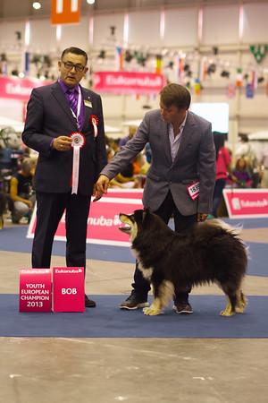 Euro dog show 2013- sneak peak take 1