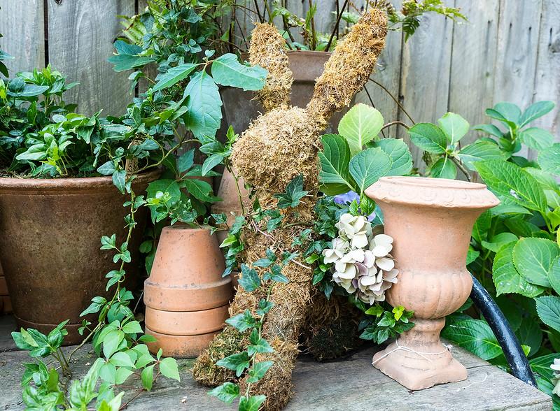 garden bunny.jpg