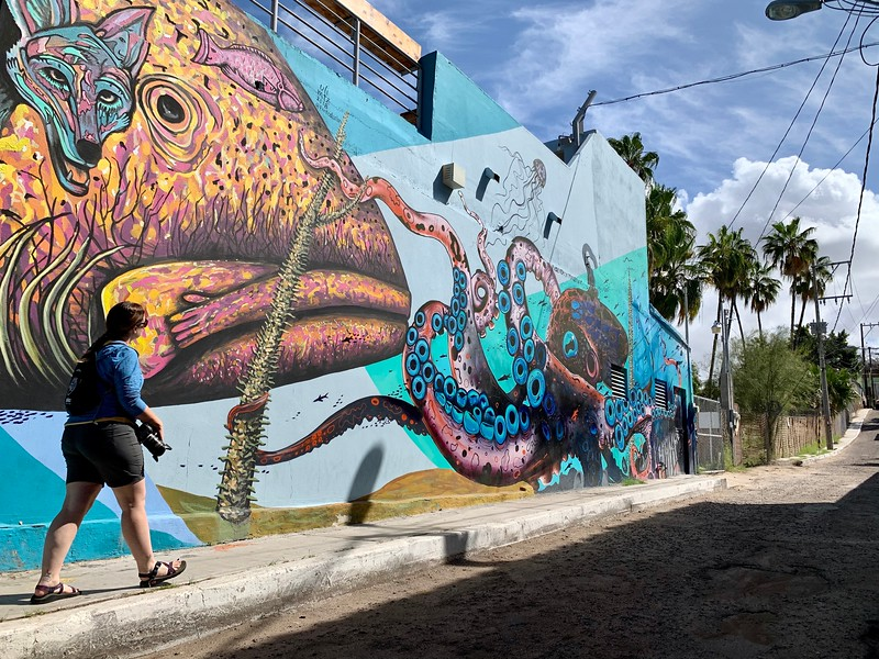 LIna Stock of the Divergent Travelers Adventure Travel Blog admiring the street art in La Paz Mexico