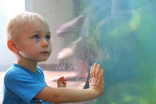 Visit to John Ball Zoo - 7/13/15