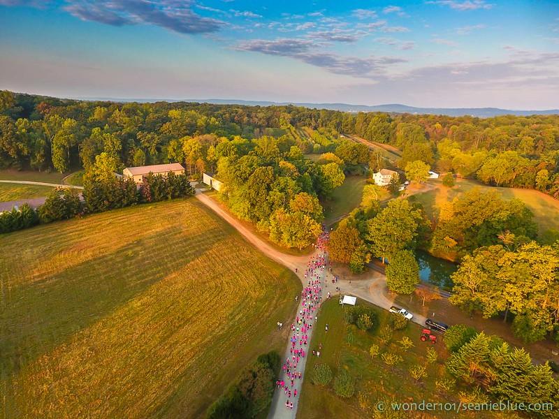 Drone by Sean Divas 1300 40-0248.jpg