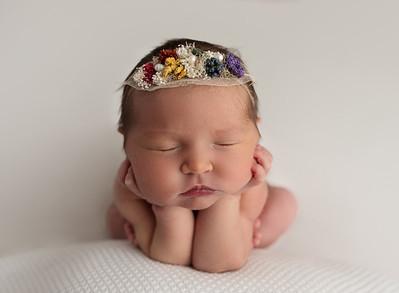 Yockey {Evelynn Newborn}