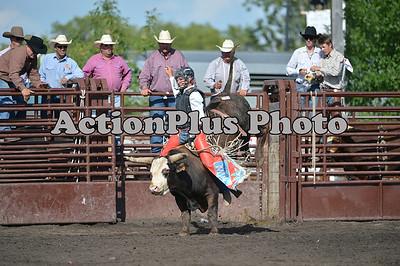 2012 CHSF Bulls